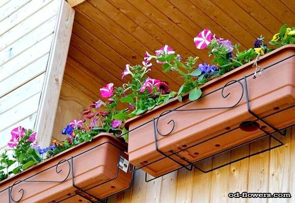 Какой контейнер купить для балкона